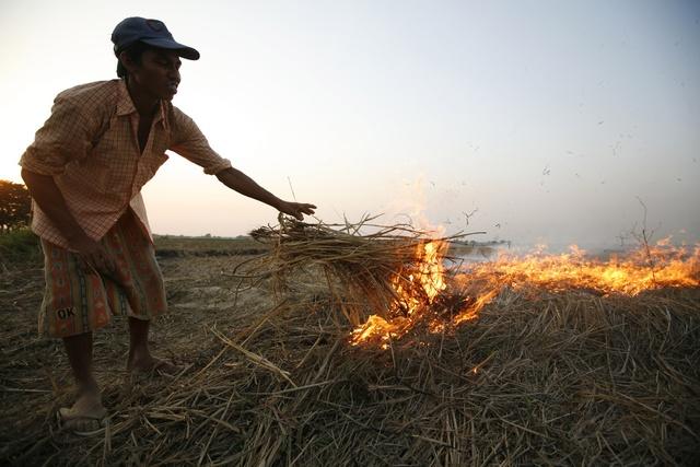 A farmer performs slash and burn on his farm near Bago