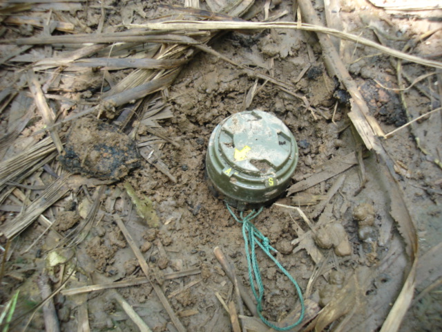 7.In place of destroyed plantations are landmines intended for civilian casualties