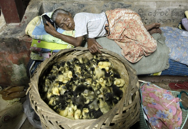A woman sleeps near her ducklings at a monastery in Bago township