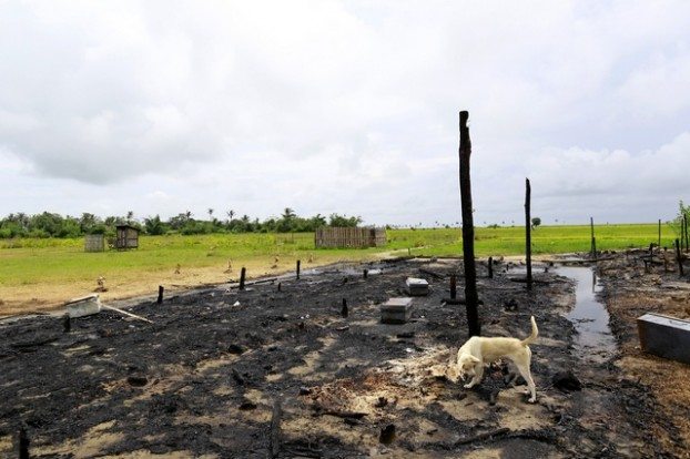 A dog is seen at a police camp that was burnt by the Rohingya during a riot near Ohntawgyi village