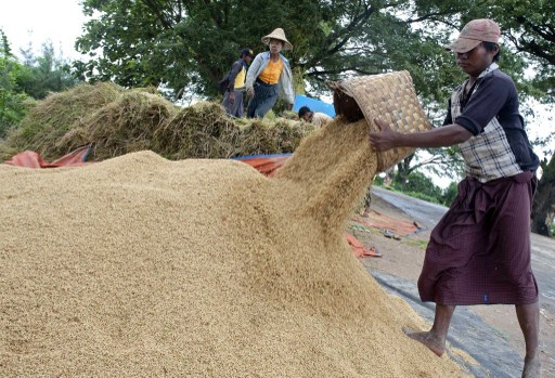Rice exports could be banned till November