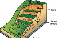 Dynamics of a landslide