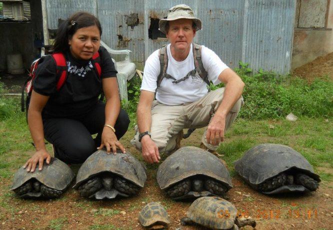 Turtle conservationist rewarded for efforts in Burma