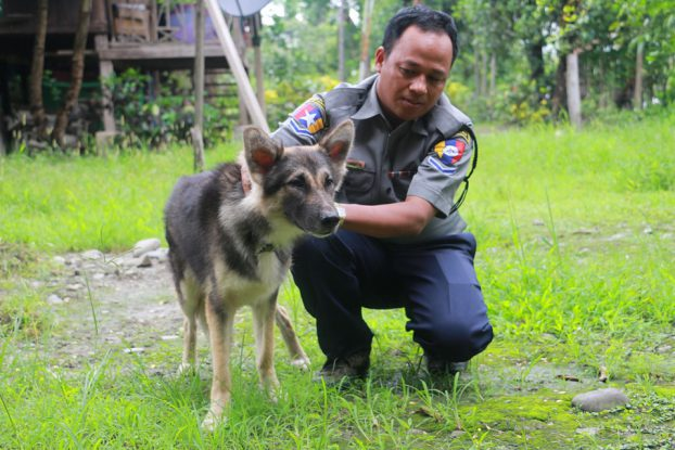 Puppy to sniff out crime in Sagaing