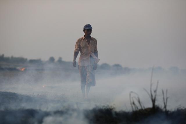 A farmer walks on his field after performing slash and burn near Bago