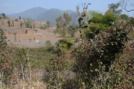 1. Panorama