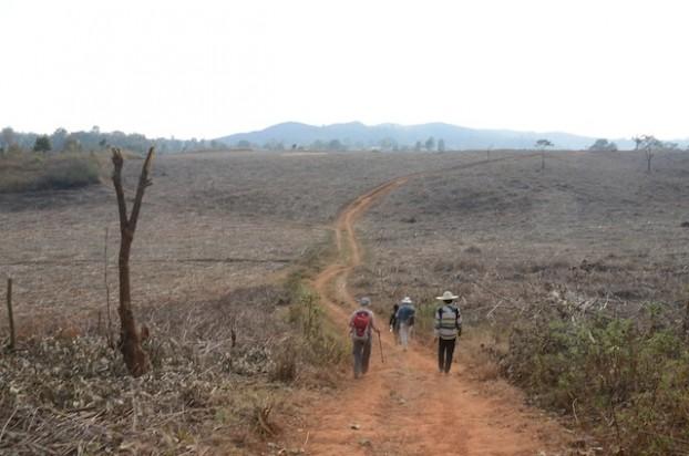 3. Hiking