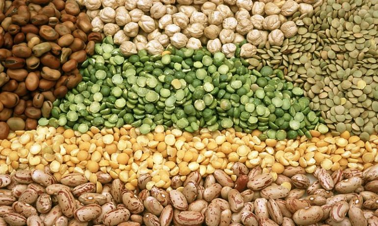 India turns to Burma, Africa for pulse imports
