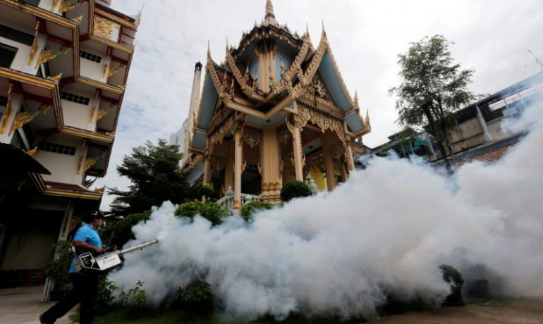 Thailand reports first cases of Zika-linked microcephaly
