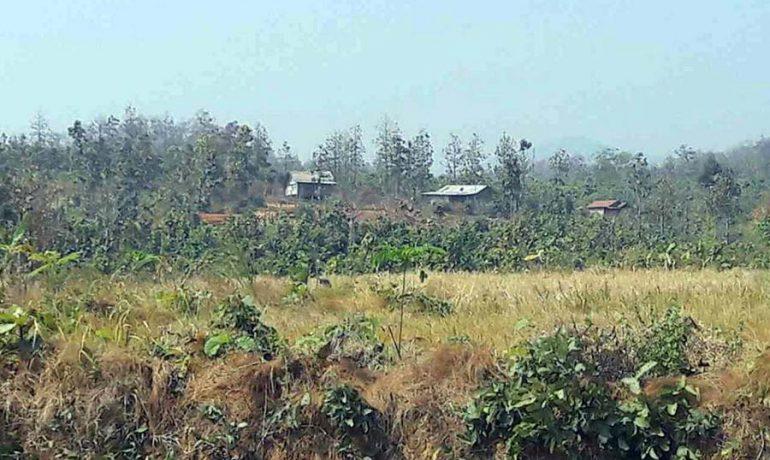 Burmese military denies 'terrorising' Indian villagers