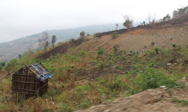 Efforts to change Chin farming habits seek to slow harmful deforestation